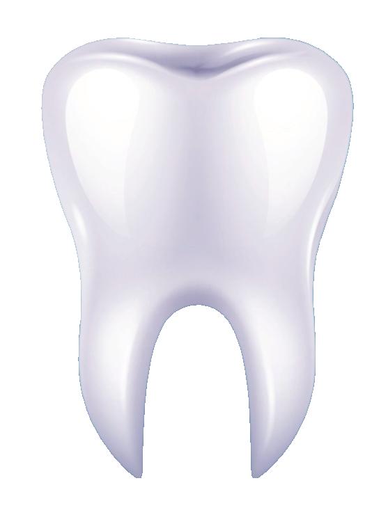 ana sayfadaki beyaz diş hizmetlerimiz bölümünün ortasındaki resimdir